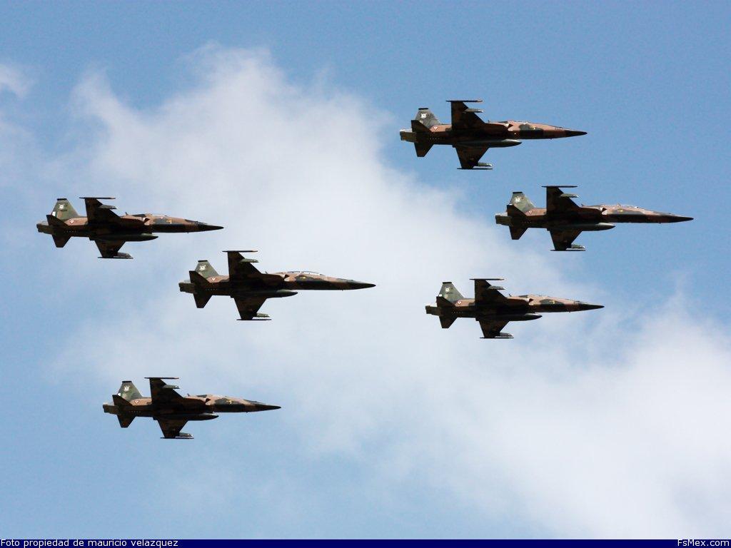 Aerea foto fuerza mexicana 50